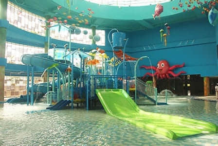 indoor play park